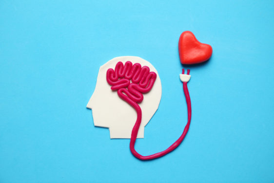 Figure of man with brain and red heart. Love and intelligence.
